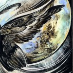 After Life : Detail-owl wing